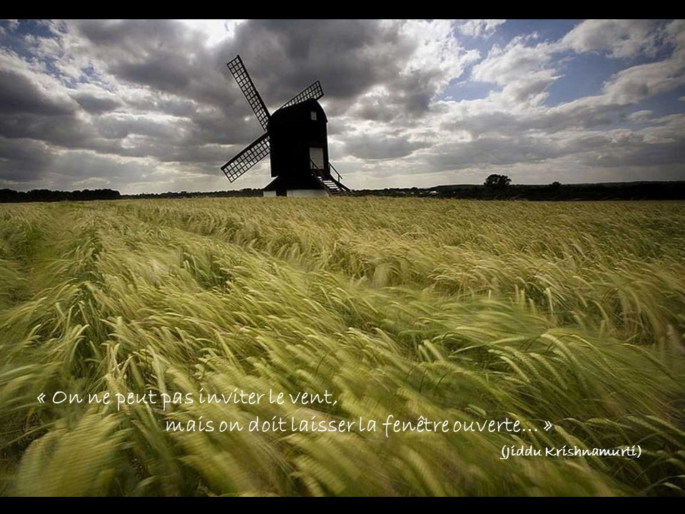 « On ne peut pas inviter le vent,