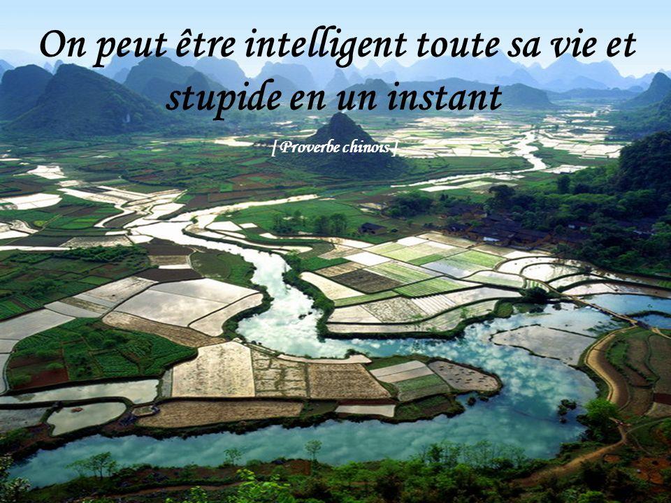 On peut être intelligent toute sa vie et stupide en un instant
