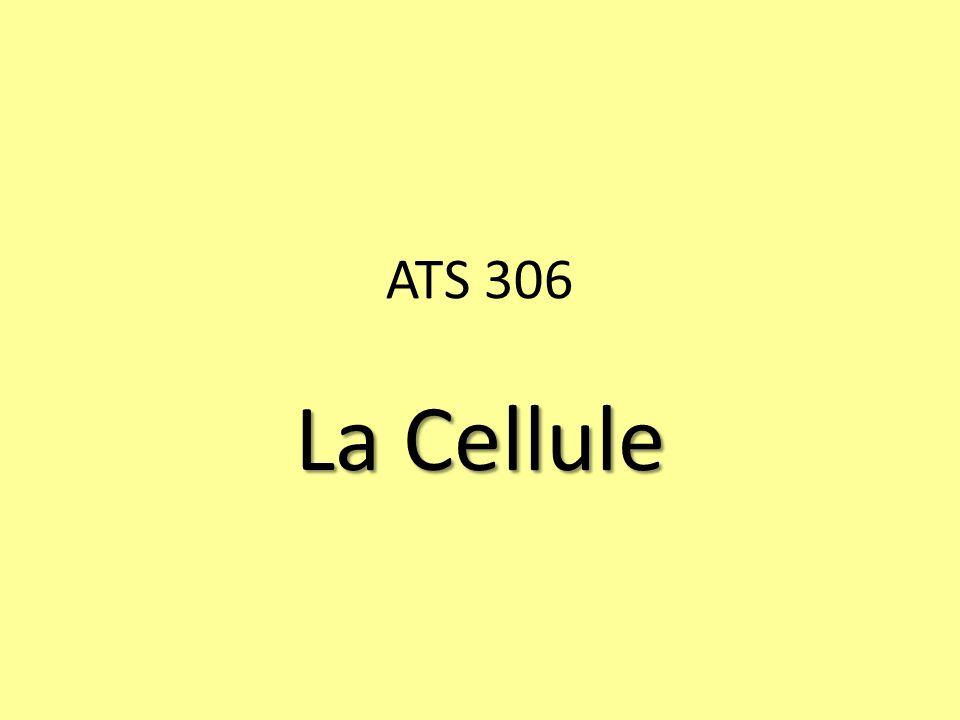 ATS 306 La Cellule