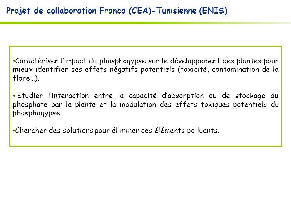 Projet de collaboration Franco (CEA)-Tunisienne (ENIS)