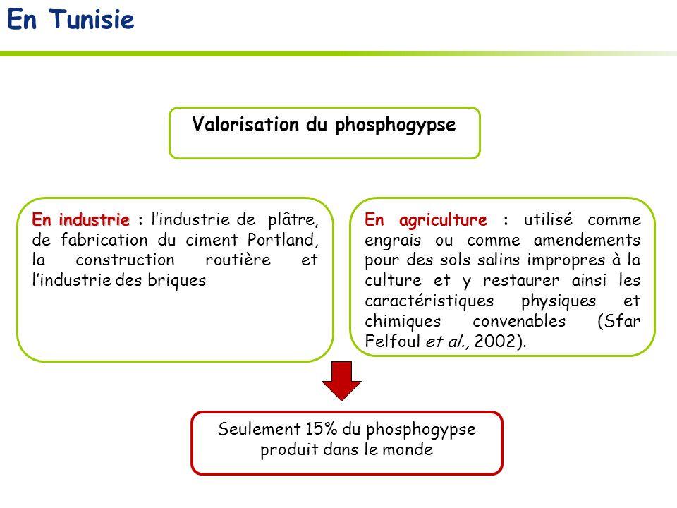 Valorisation du phosphogypse