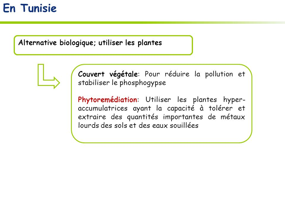 En Tunisie Alternative biologique; utiliser les plantes