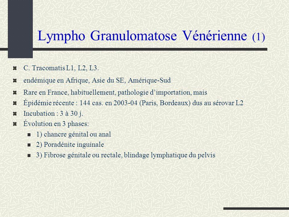 Lympho Granulomatose Vénérienne (1)