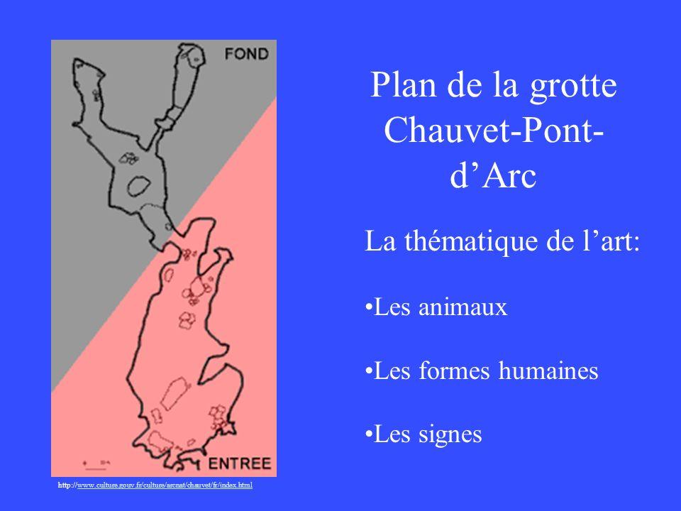 Plan de la grotte Chauvet-Pont-d'Arc