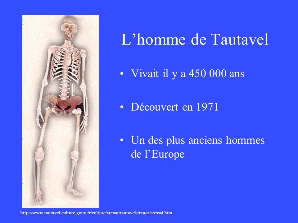 L'homme de Tautavel Vivait il y a 450 000 ans Découvert en 1971