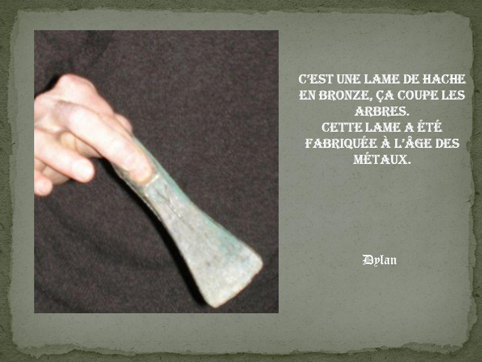 C'est une lame de hache en bronze, ça coupe les arbres.