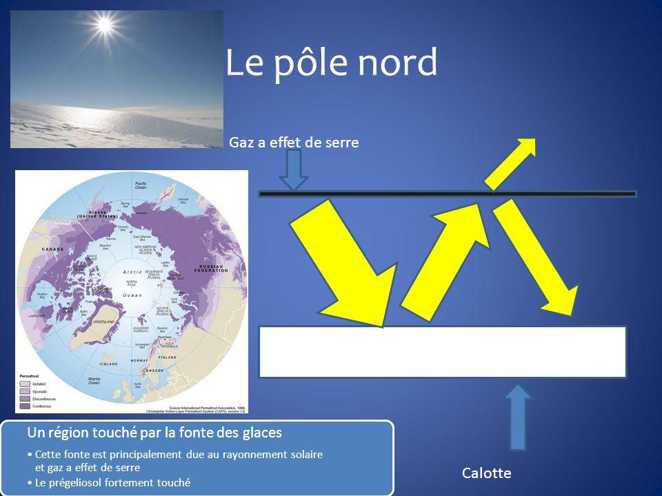 Le pôle nord Gaz a effet de serre Calotte