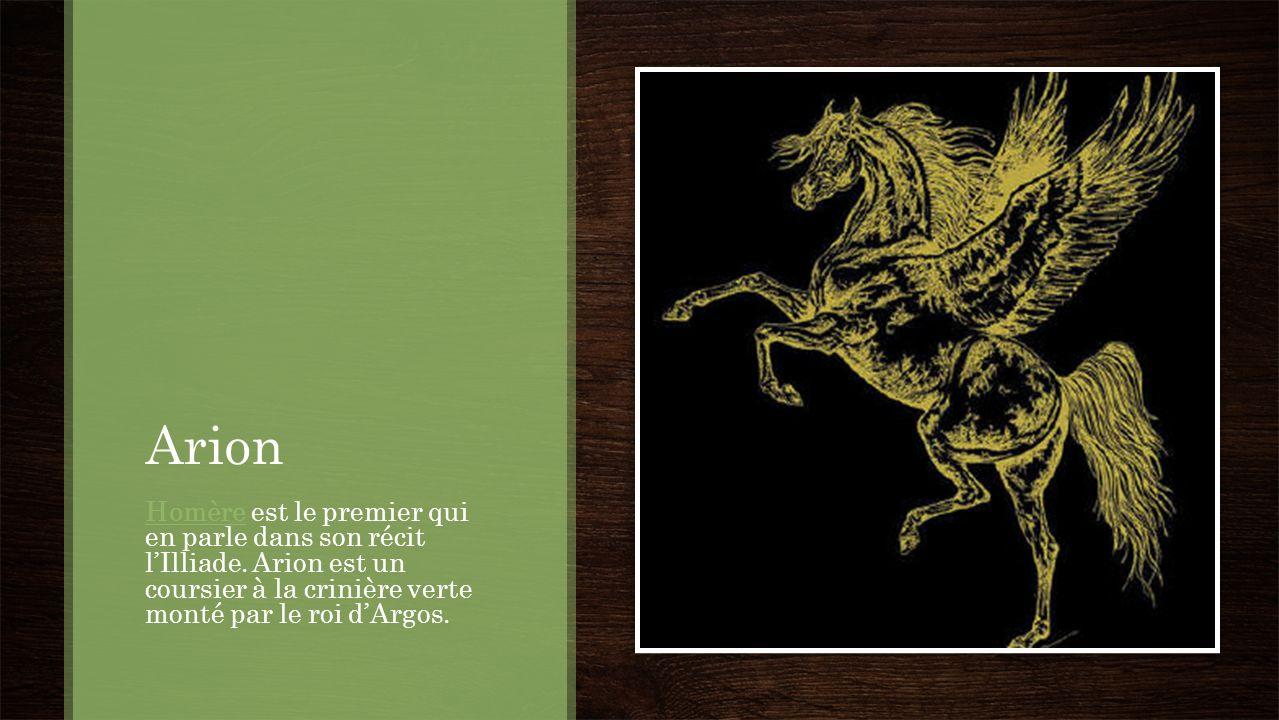 Arion Homère est le premier qui en parle dans son récit l'Illiade.