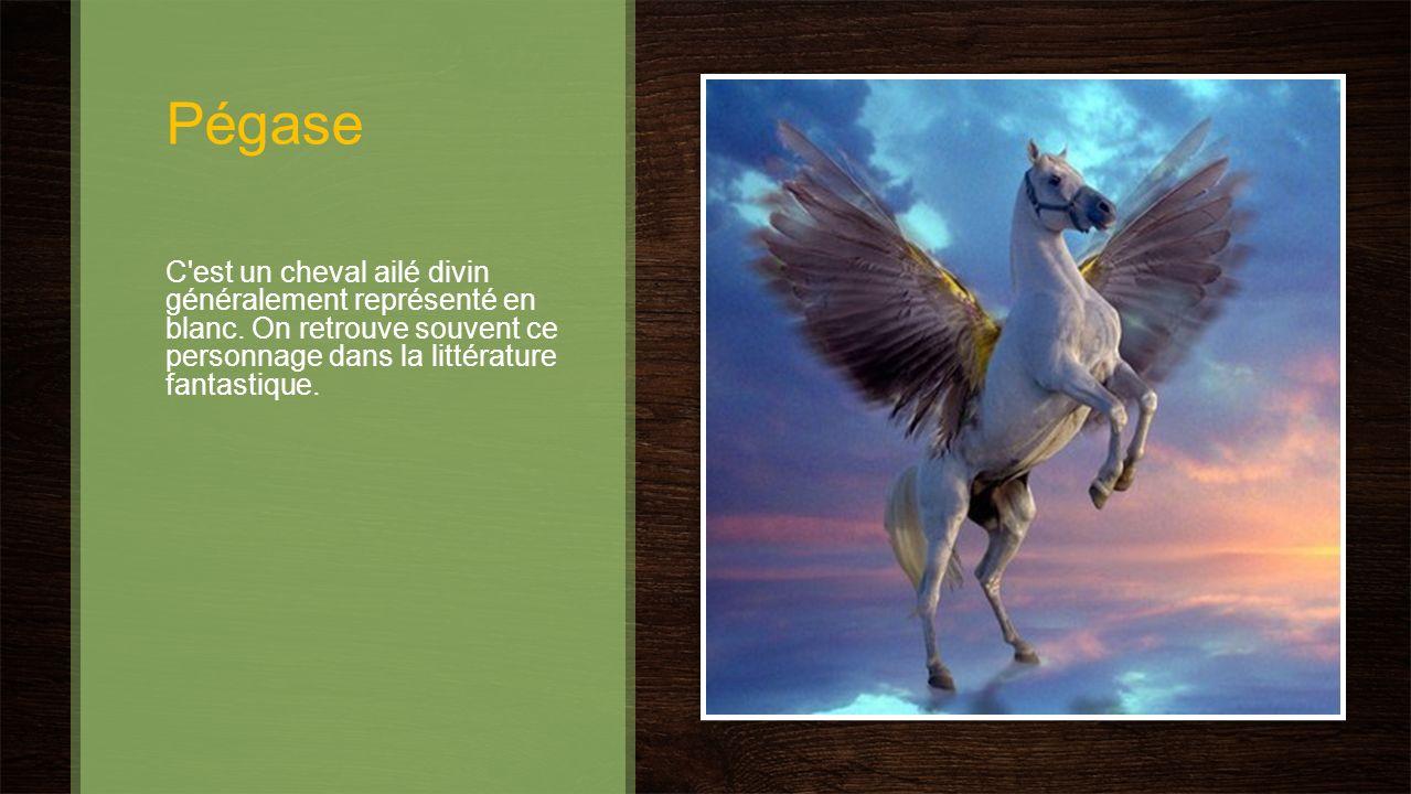 Pégase C est un cheval ailé divin généralement représenté en blanc.