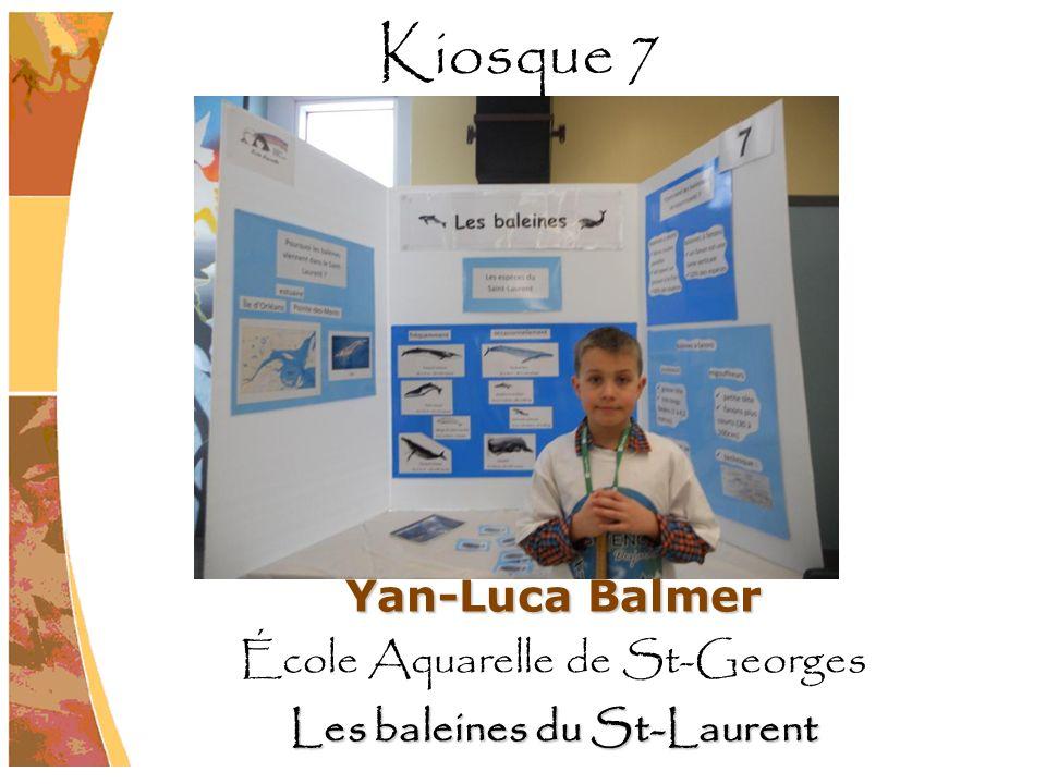 Les baleines du St-Laurent