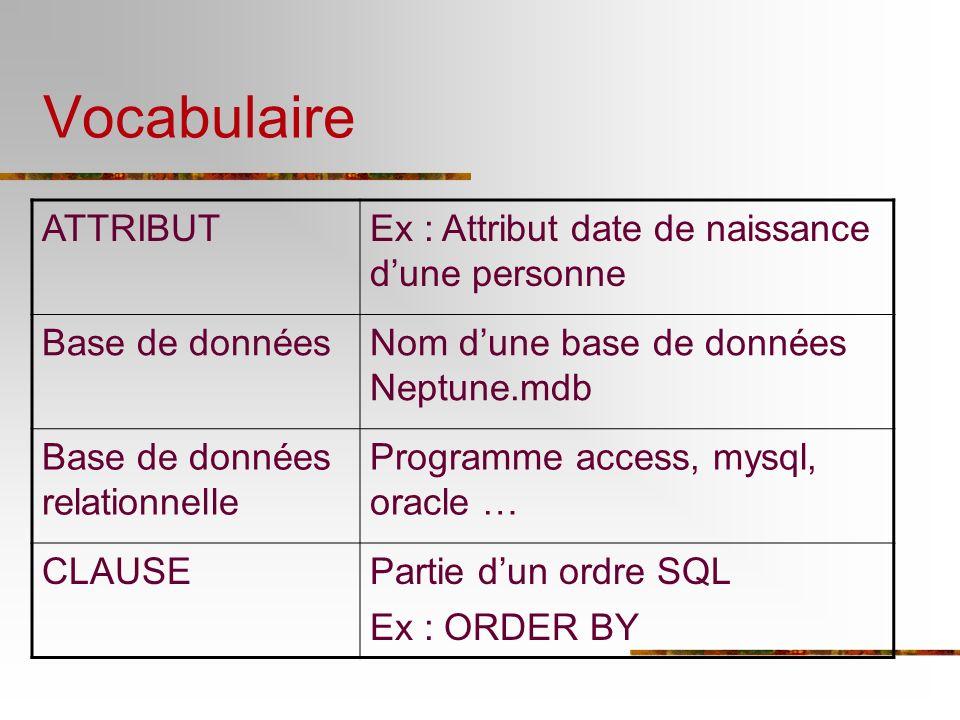 Vocabulaire ATTRIBUT Ex : Attribut date de naissance d'une personne