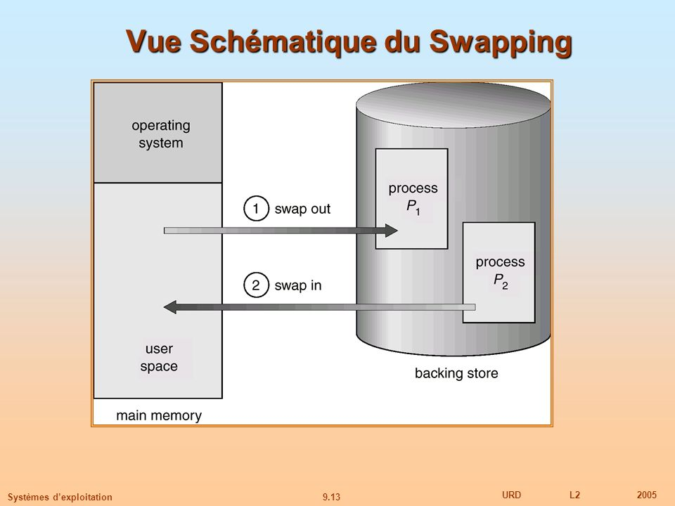 Vue Schématique du Swapping