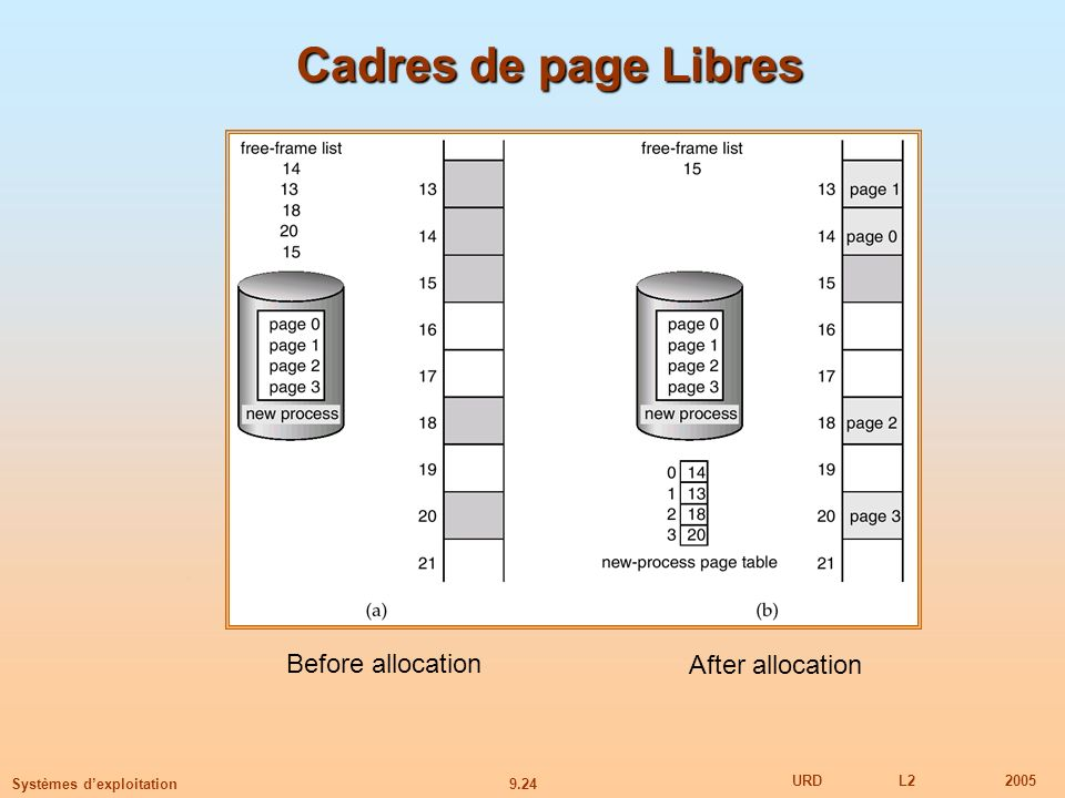 Cadres de page Libres Before allocation After allocation