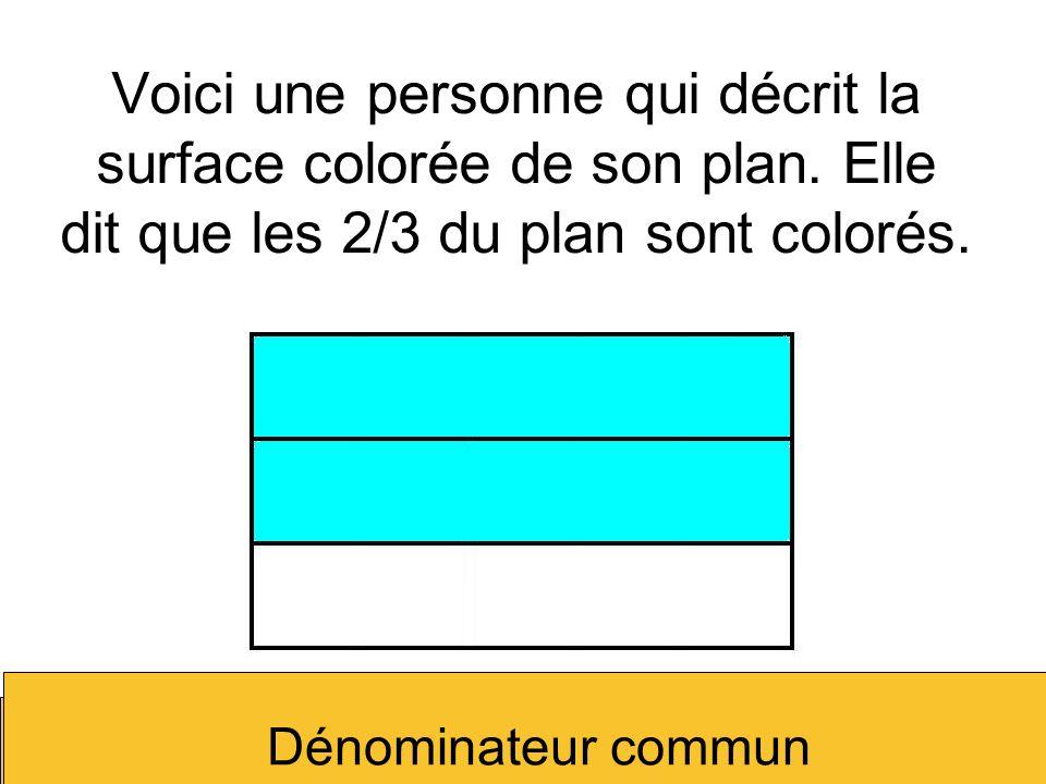 Voici une personne qui décrit la surface colorée de son plan
