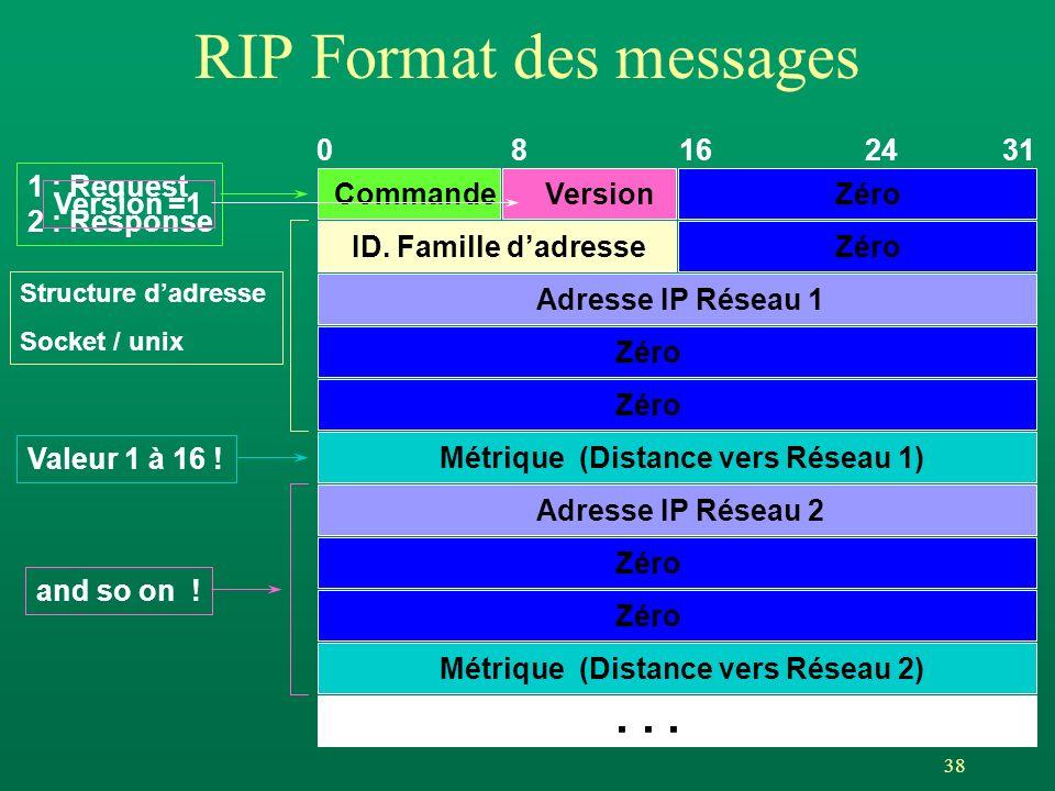 RIP Format des messages