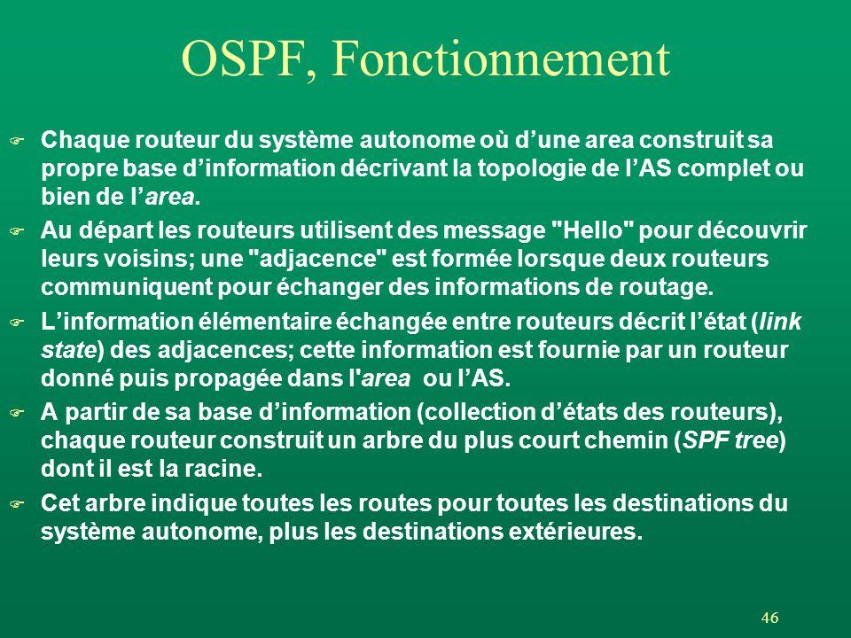OSPF, Fonctionnement