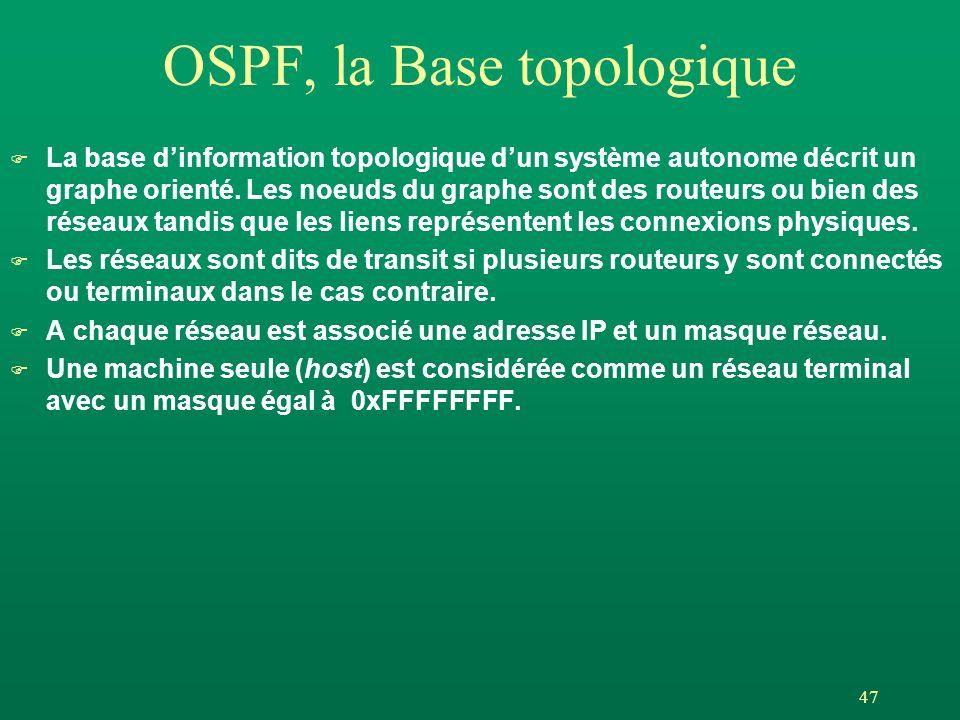 OSPF, la Base topologique