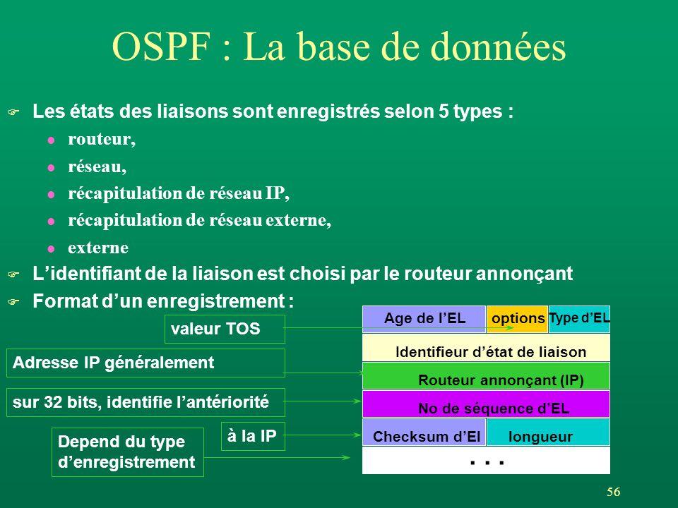 OSPF : La base de données