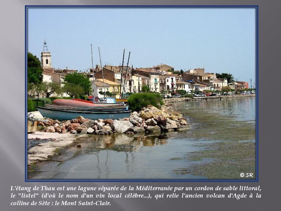 L étang de Thau est une lagune séparée de la Méditerranée par un cordon de sable littoral, le listel (d où le nom d un vin local célèbre...), qui relie l ancien volcan d Agde à la colline de Sète : le Mont Saint-Clair.