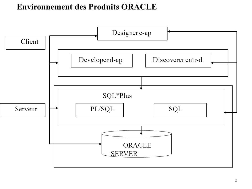 Environnement des Produits ORACLE