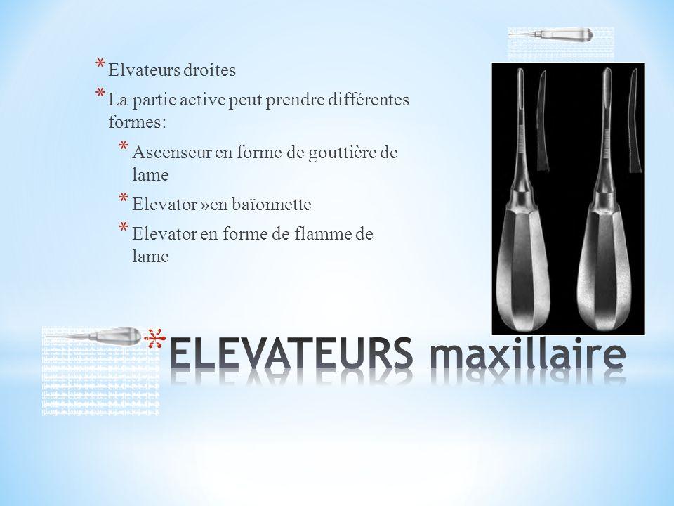 ELEVATEURS maxillaire