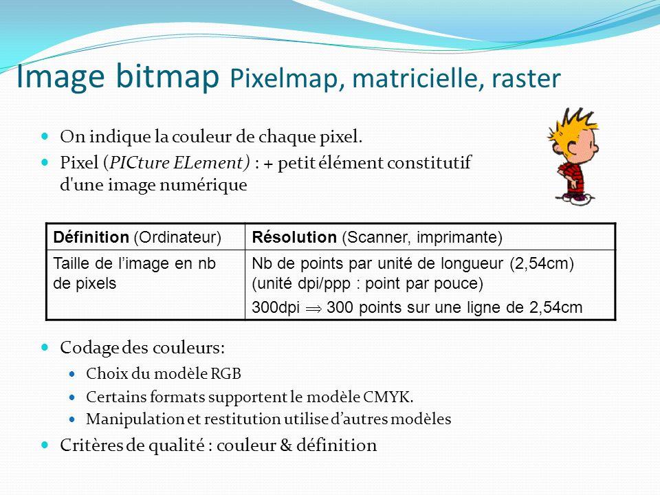 Image bitmap Pixelmap, matricielle, raster