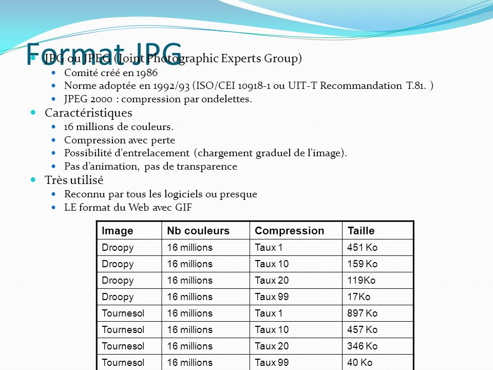 Format JPG JPG ou JPEG (Joint Photographic Experts Group)