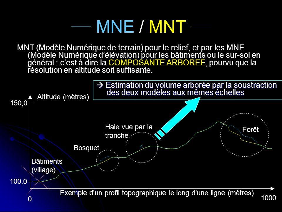 MNE / MNT