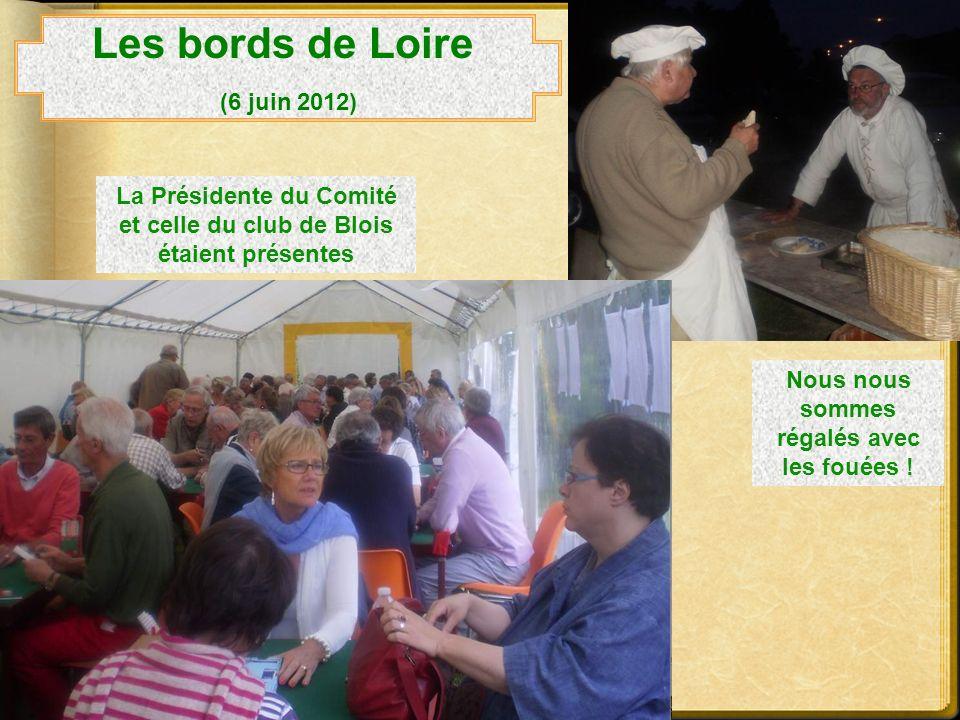 Les bords de Loire (6 juin 2012)