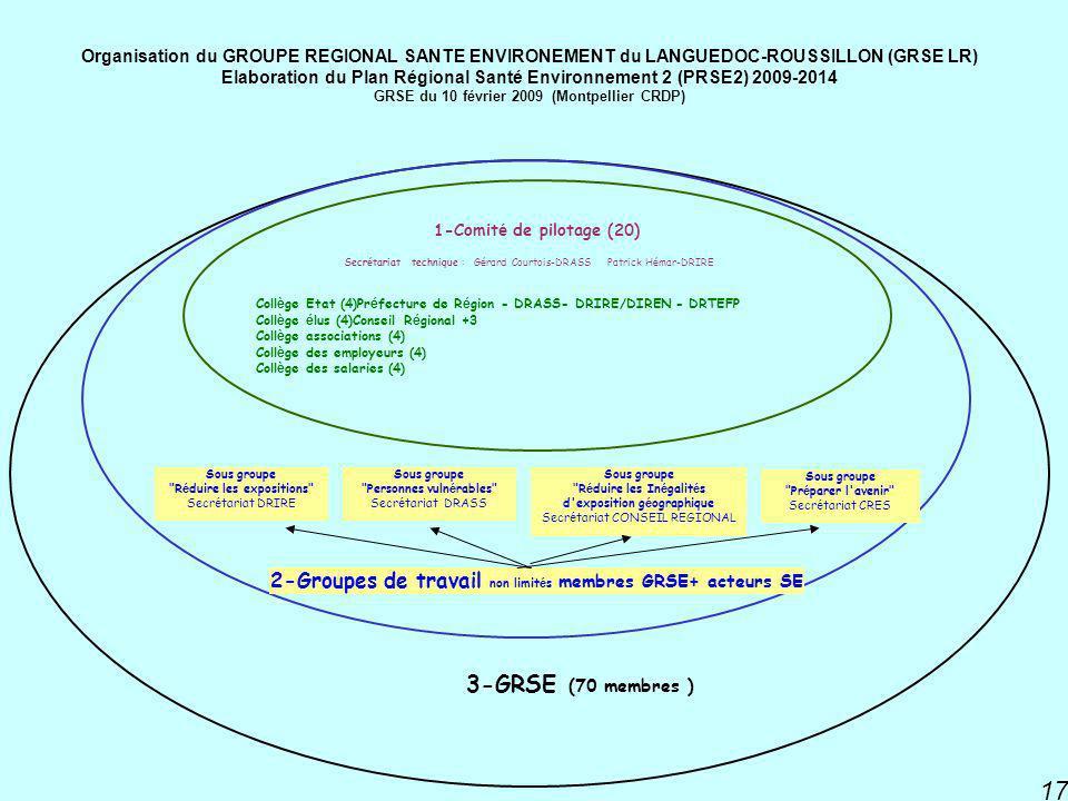3-GRSE (70 membres ) 2-Groupes de travail non limités membres GRSE+ acteurs SE. Collège Etat (4)Préfecture de Région - DRASS- DRIRE/DIREN - DRTEFP.