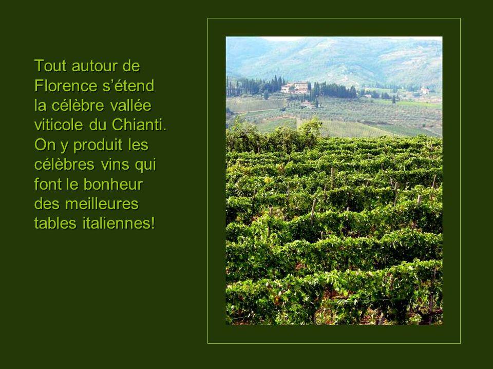 Tout autour de Florence s'étend la célèbre vallée viticole du Chianti