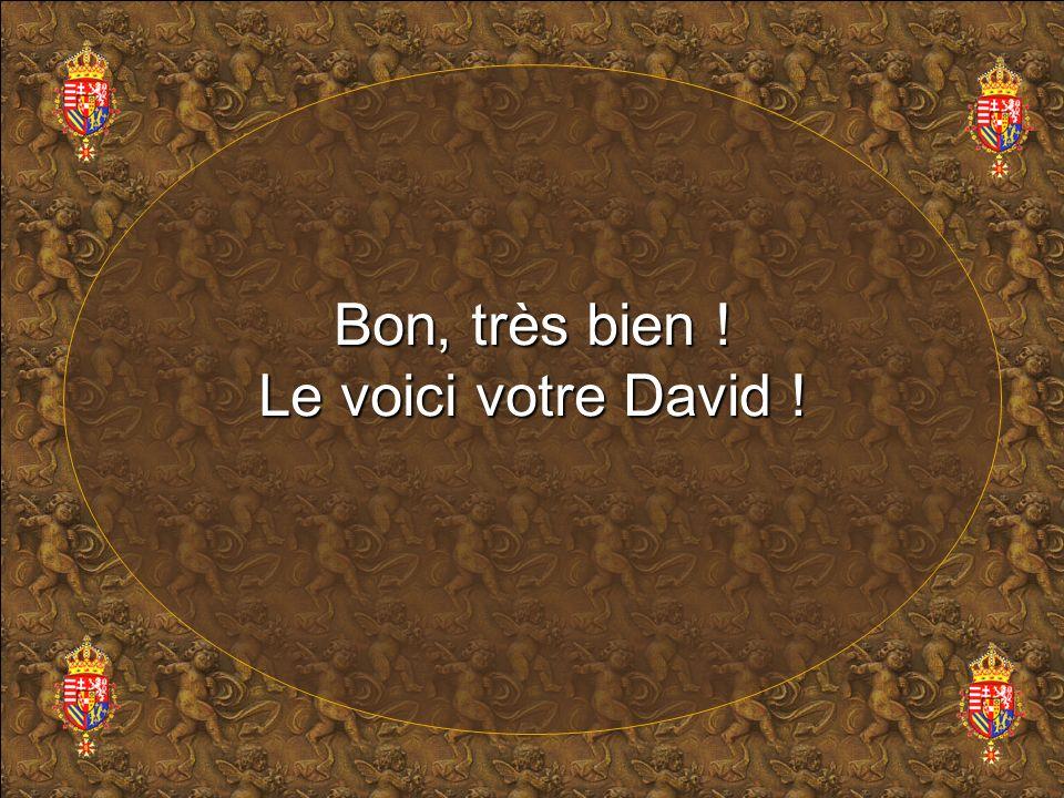 Bon, très bien ! Le voici votre David !