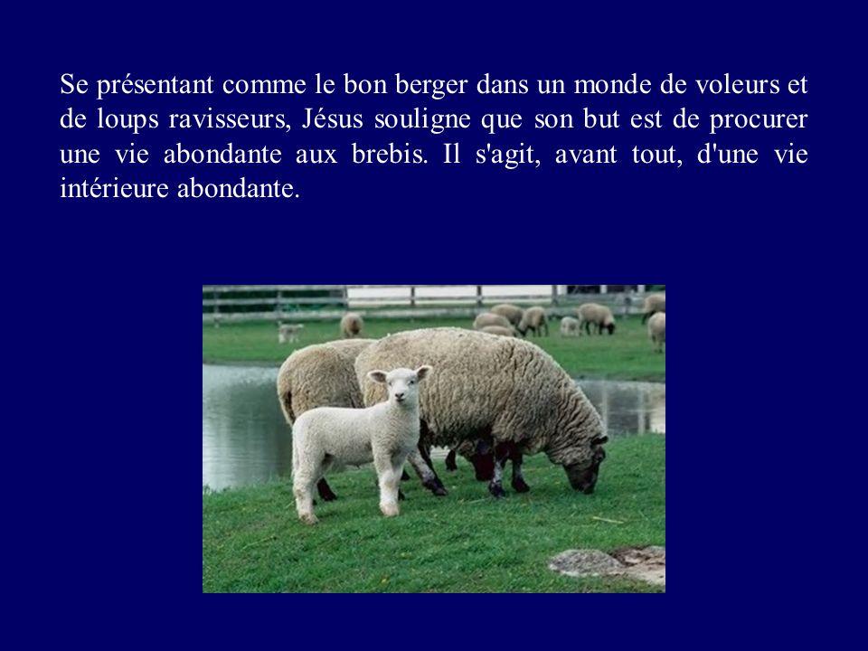 Se présentant comme le bon berger dans un monde de voleurs et de loups ravisseurs, Jésus souligne que son but est de procurer une vie abondante aux brebis.