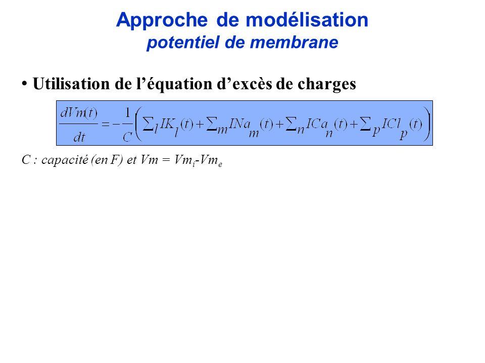 Approche de modélisation potentiel de membrane