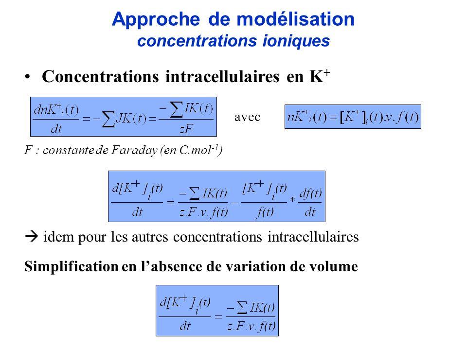 Approche de modélisation concentrations ioniques