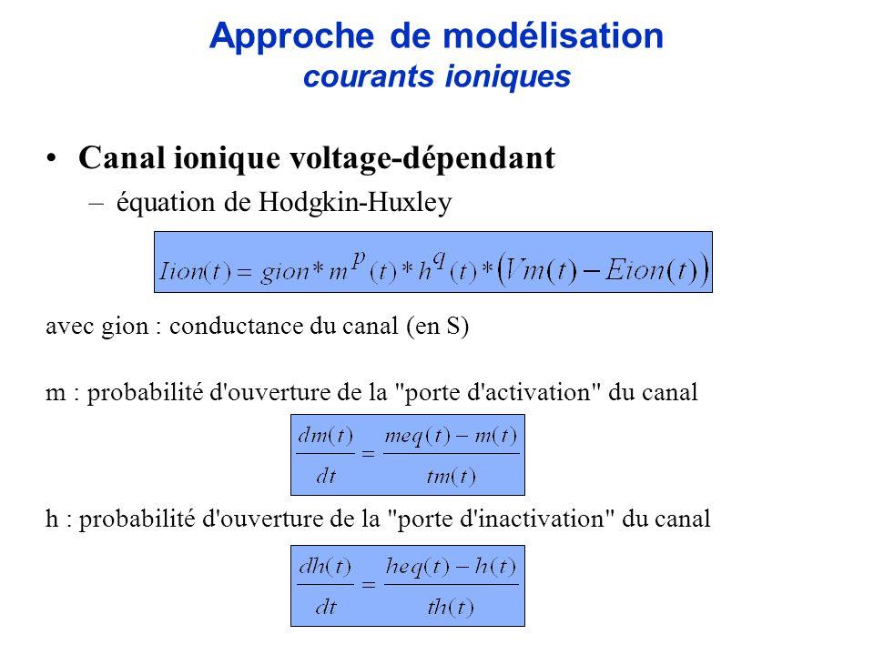 Approche de modélisation courants ioniques