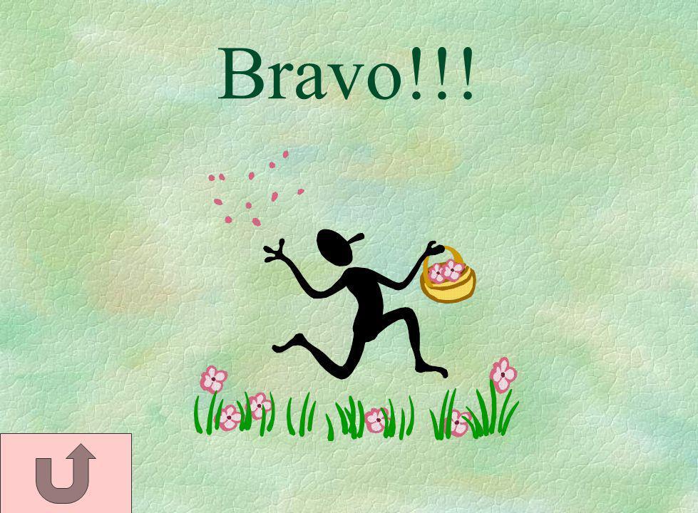 Bravo!!!