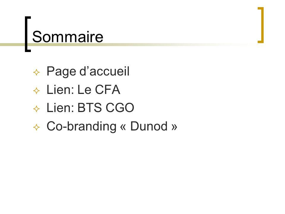 Sommaire Page d'accueil Lien: Le CFA Lien: BTS CGO