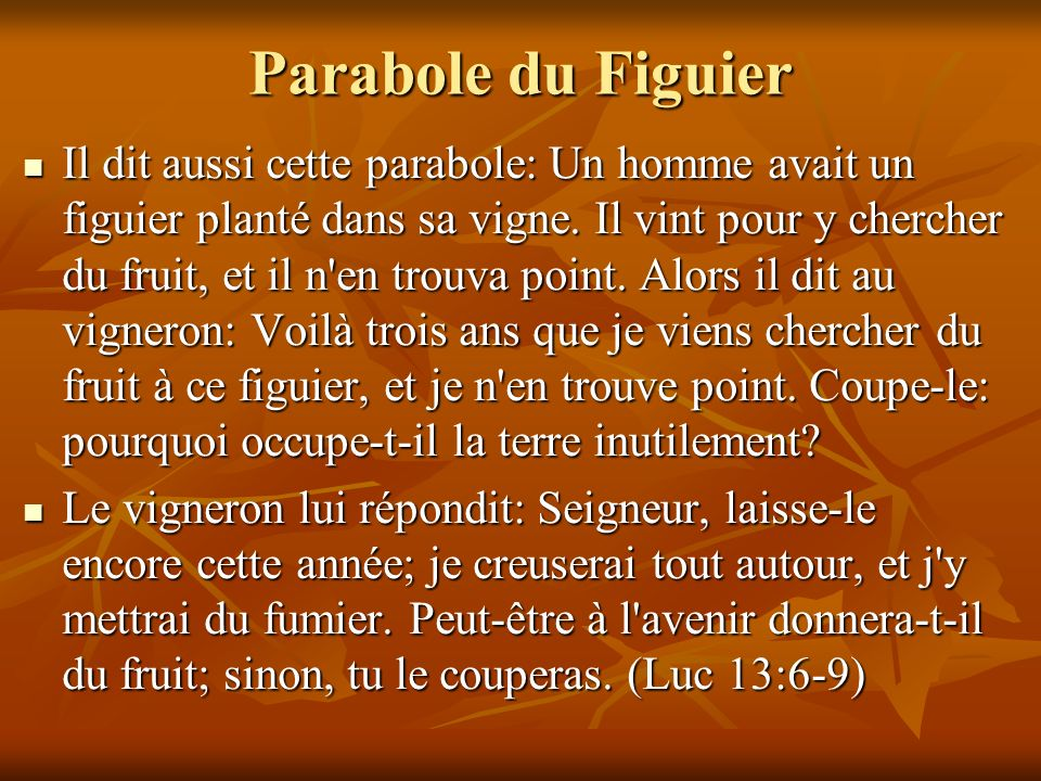 Parabole du Figuier