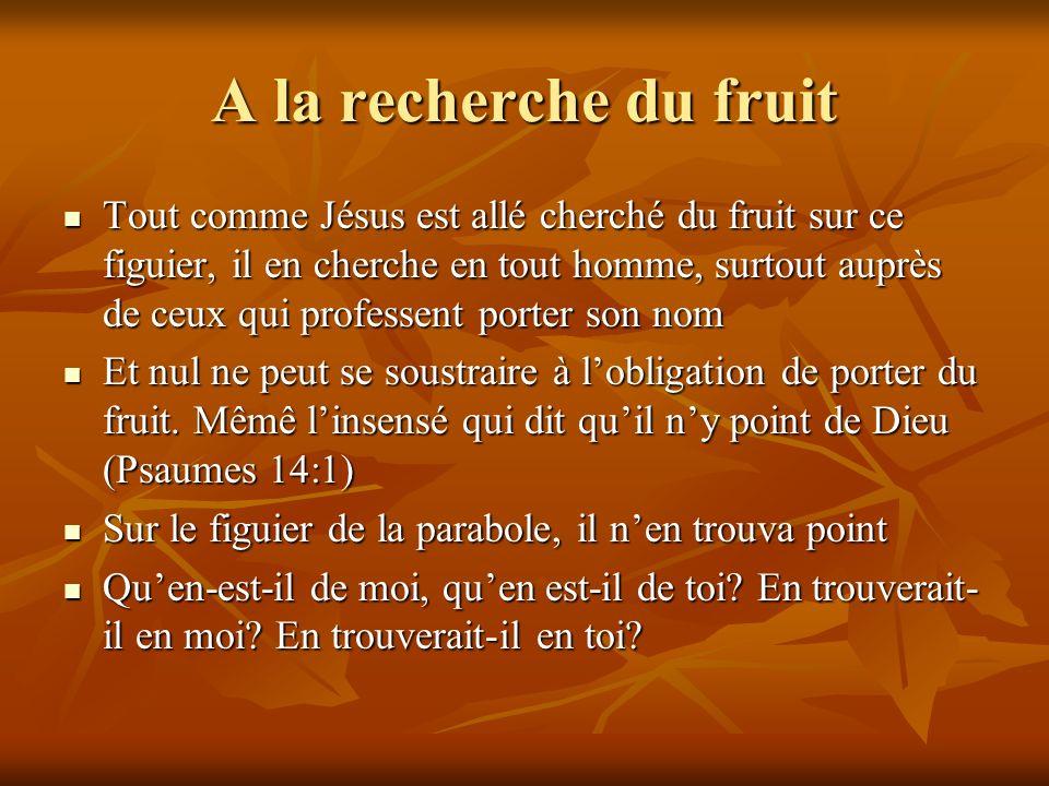 A la recherche du fruit