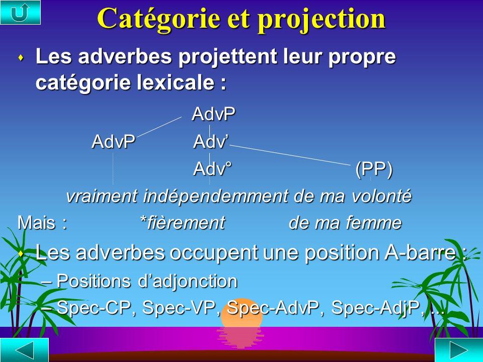 Catégorie et projection