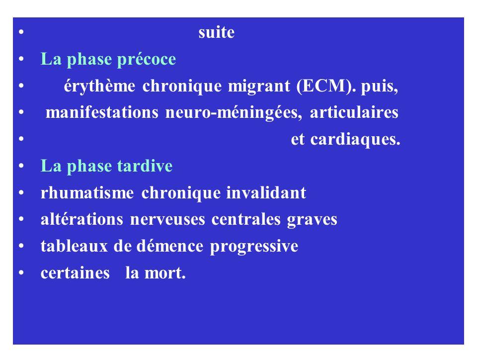 suite La phase précoce. érythème chronique migrant (ECM). puis, manifestations neuro-méningées, articulaires.