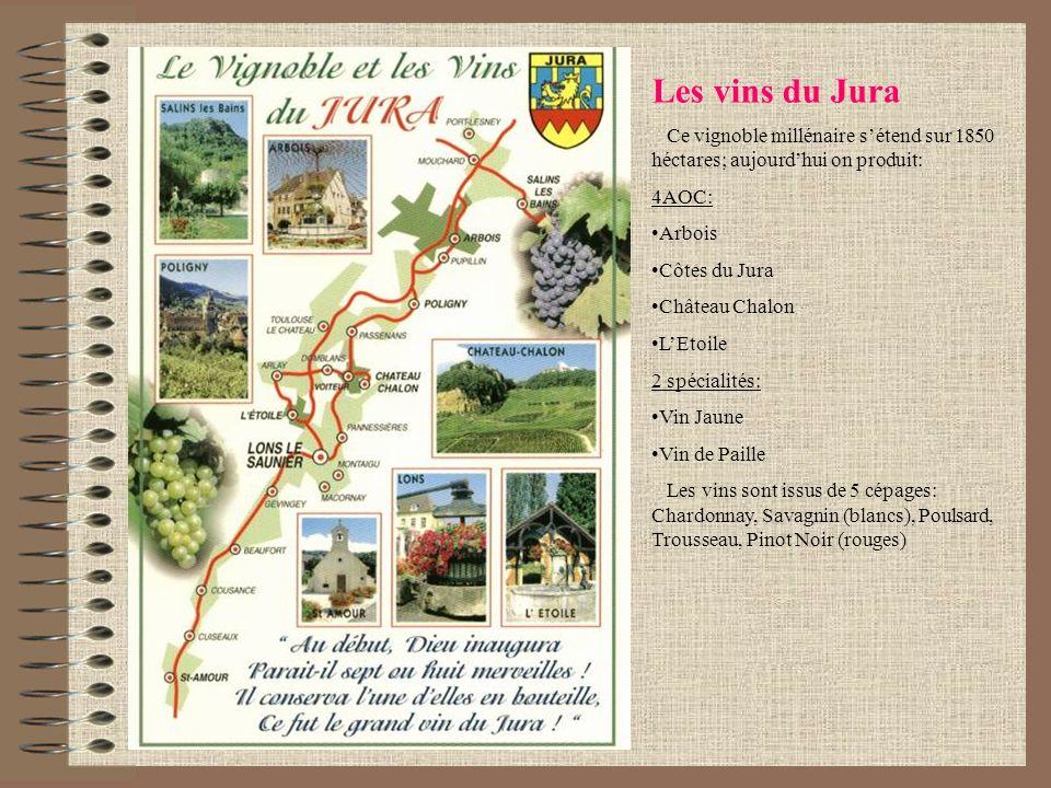 Les vins du JuraCe vignoble millénaire s'étend sur 1850 héctares; aujourd'hui on produit: 4AOC: Arbois.
