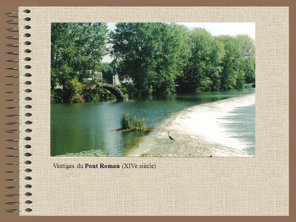 Vestiges du Pont Roman (XIVe siècle)