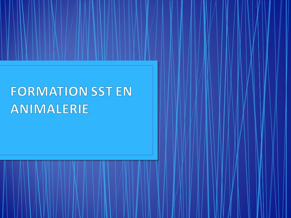 FORMATION SST EN ANIMALERIE