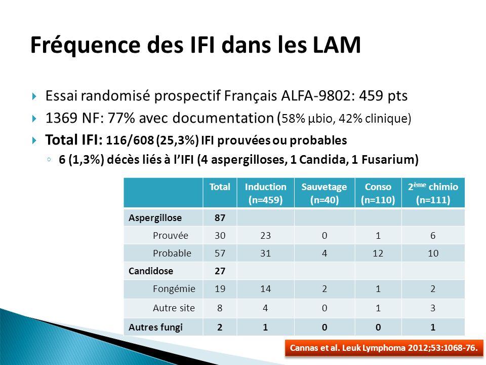 Fréquence des IFI dans les LAM