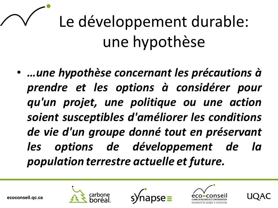 Le développement durable: une hypothèse