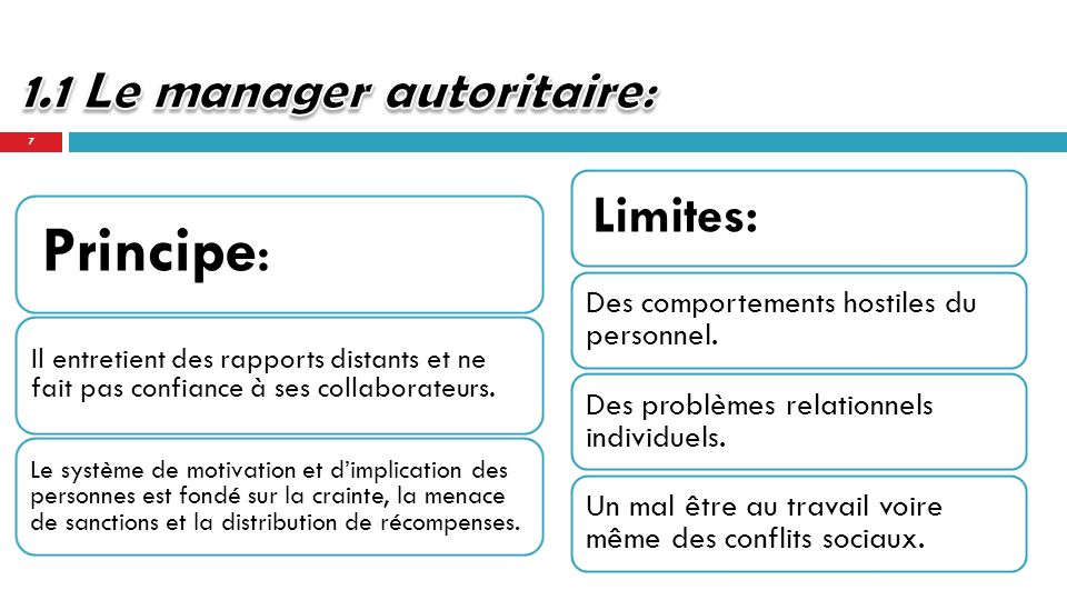 1.1 Le manager autoritaire: