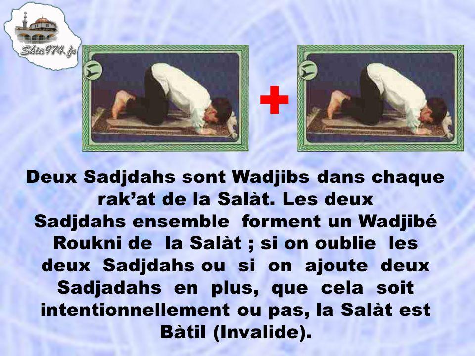 + Deux Sadjdahs sont Wadjibs dans chaque rak'at de la Salàt. Les deux