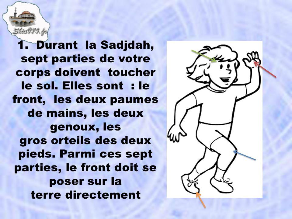 1. Durant la Sadjdah, sept parties de votre corps doivent toucher le sol. Elles sont : le front, les deux paumes de mains, les deux genoux, les
